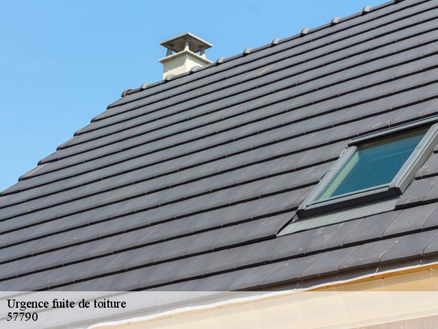 Réparation fuite de toiture à Nitting tél: 03.59.28.30.89